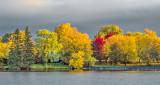 Autumn Canalside DSCF23619-21