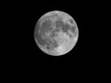 Moon 20161113 (DSCN00742)