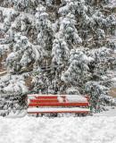 20161205 Snowfall DSCN01509