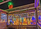 Crystal Palace Christmas Lights P1160226-35