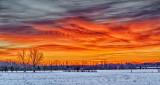 Winter Sunrise P1160996-8