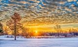 Winter Sunrise P1170094-6