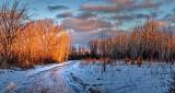 Winter Lane At Sunrise P1170381-3