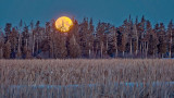 Snow Moon Setting P1180009-10