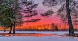 Winter Sunrise P1180294-6