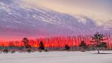 Winter Sunrise P1180268