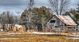 Horse & Little Rustic Barn P1180365-7