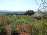 Komo village Yabeldigise. Ethiopia.
