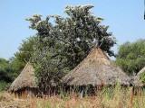 Berta village Bame-Sherqole. Ethiopia.