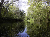 Missouri Trout Streams