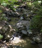Adobe Creek