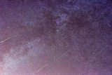 Cygnus  with some Perseids