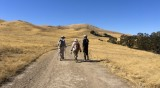 Hiking to the top of Mission Peak