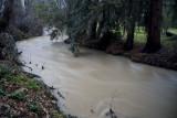 The mighty Stevens Creek
