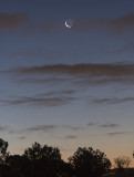 The Waning Crescent Moon and Mercury Rising