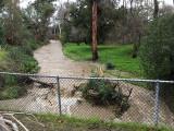 The rushing Saratoga Creek