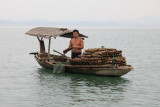 Pêcheur du lac