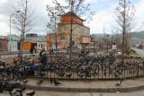 La place aux pigeons