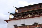 Détail du temple de Gandan