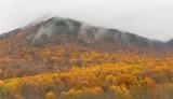 Overlook on Newfound Gap Road