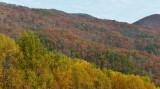 Overlook Near Laurel Falls Trailhead