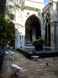 cathedral geese
