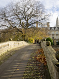Autumn bridge to Clare's College