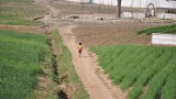 child walking home