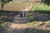 looks like a long way home DPRK