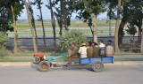 alternative public transport