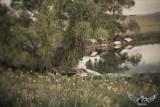 Hot Rod Lake @ the Broken Spoke Saloon Campground ©UliStich2013 #sturgis #ridebrokenspokes #sturgis2013