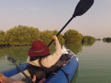 Kayaking Sailing Birding in Al-Dhakira Mangrove, Qatar