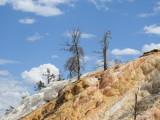 Yellow Stone National Park - Mamoth, Montana