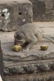 _3074 Angkor Thom Enceinte royale.jpg