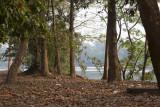 _3512 Angkor Vat.jpg