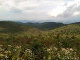 Black Balsam overlook, NC