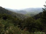 Blue Ridge Parkway view