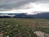 Alpine Tundra: Rocky Mountain NP, Larimer Co., CO