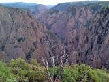 Black Canyon of the Gunnison: Gunnison Co., CO