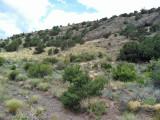 Elephant Rocks area: Saguache Co., CO
