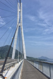 Bike lane on Tatara bridge.jpg