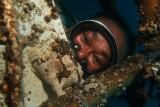 Frogfish kangi.JPG