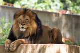 ::National Zoo::