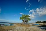 Tulapos Marine Sanctuary D700b_02588 copy.jpg