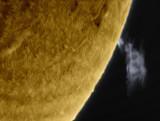 Prominence 29 January 2014