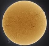 Sun Full Disk 28 March 2014