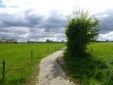 Bosweg Ulft