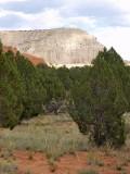 Kodachrome State Park, Utah