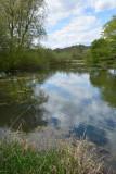 Pond in Sizergh Cumbria