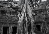 20130926_Angkor Wat_0171.jpg